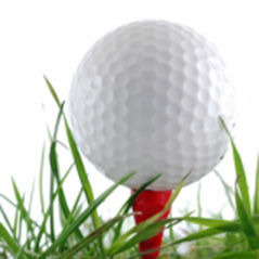 Finnish Foursomes Match Devised on Golf Course